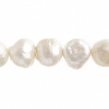 """Freshwater Pearl Round Shape 8X9mm 16"""" String White"""